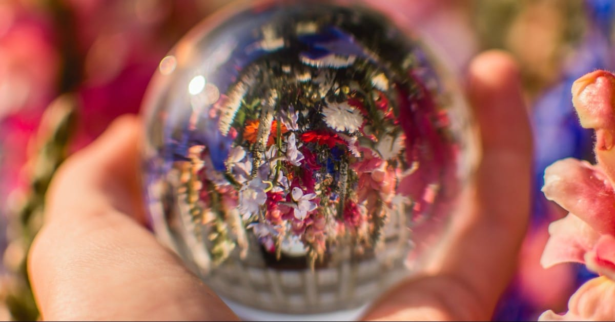 Home Is Home Blog - Crystal Ball